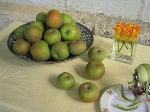 production et vente de pommes bio, le Biau Verger AB, Cheffes et Étriché, Maine-et-Loire